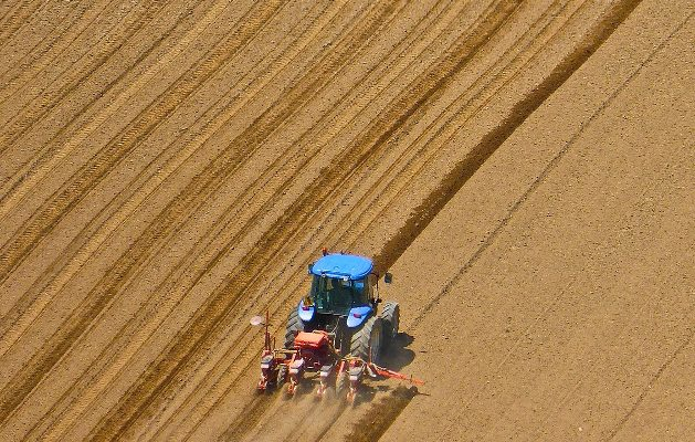 Briefing Paper 35 – Soil Biology and the Soil Food Web